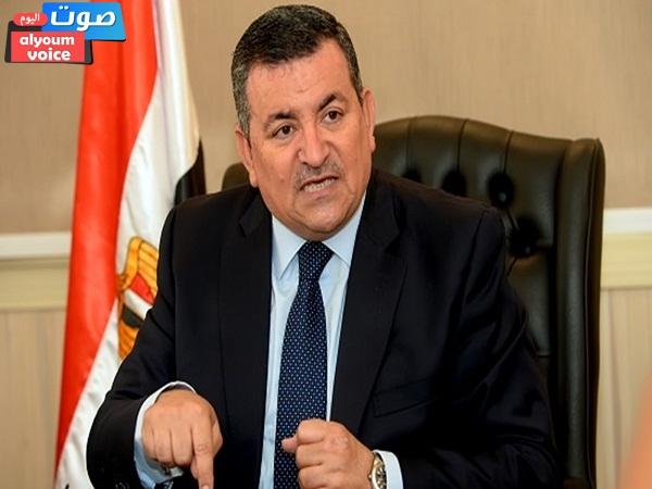 هيكل: مصر حافظت على دورها الرائد مع الدول وقدمت مساعدات من إنتاجها