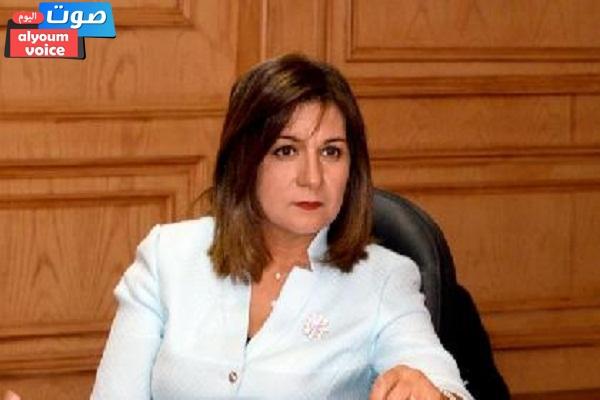 """""""الهجرة"""" تجيب على أسئلة المصريين بالخارج حول انتخابات مجلس النواب"""